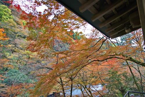 【写真】2012 紅葉 : 貴船神社/2019-02-06/IMGP5933