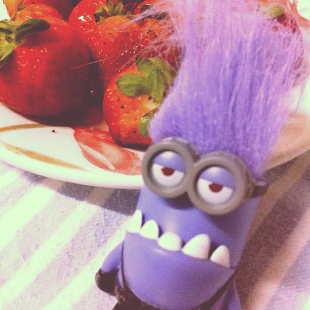 Preparados para mais uma #aventuras_na_cozinha ? :)  Huuuuum... rs #morango #toy