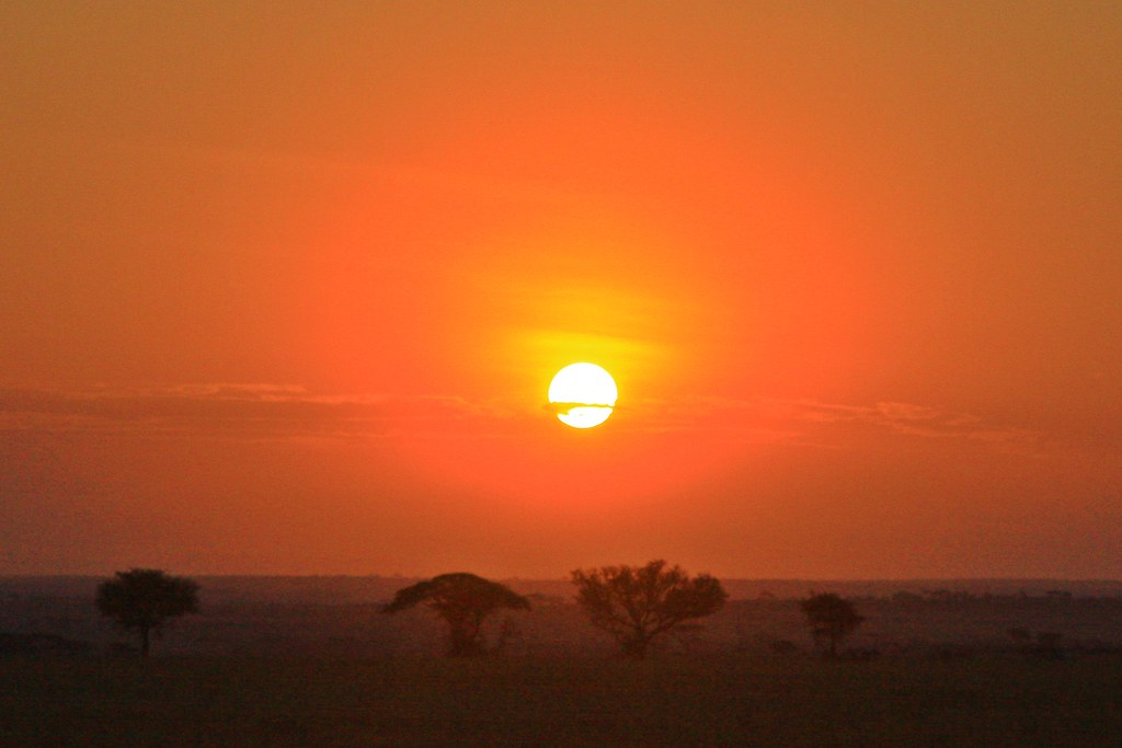 Sunrising in Serengeti