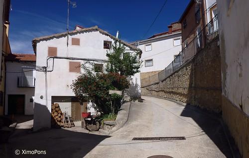 Nº 37  El Vallecillo   .P1050235