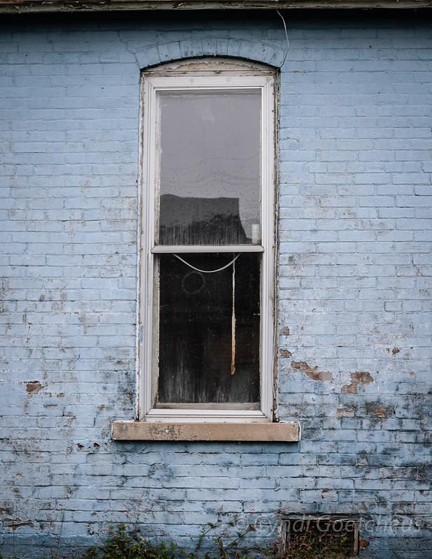 cjane window