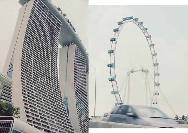 singaporex