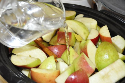 apple sauce in the slow cooker 10
