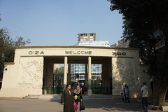 Witness the natural habitat of Giza zoo - Things to do in Cairo
