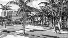 Miami Soundscape Park - West 8