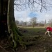 Walk around Studley Roger Deer Park. Sun 9th February 2014