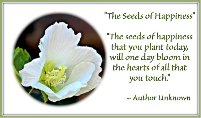 """The Seeds of Happiness"""
