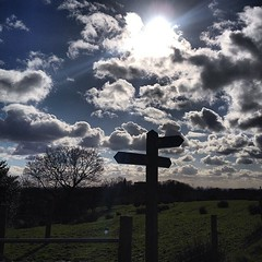 #hike #hiking #walk #walking #walks #fields #farm #spring #daffodils #tree #trees #treelovers #nature #naturelovers #naturepics #ignature #outdoors #countryside #signpost #clouds #cloudporn #cloudlovers #sun #sunbeam #sunrays