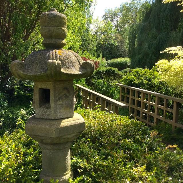 Japanese Garden in Regent's Park