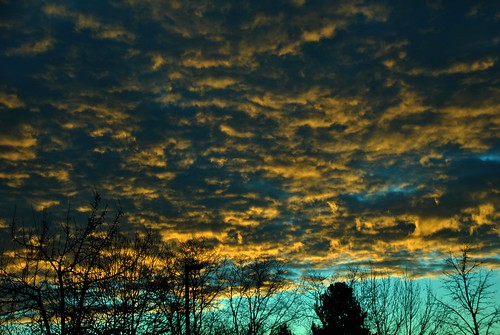 clouds cloud weather sky atmosphere atmospheric winter trees silhouette watervapor sunrise sunlight underneath altocumulus cielo everybodylovesasunrise