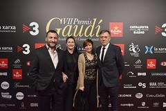 Catifa vermella VII Premis Gaudí (3)