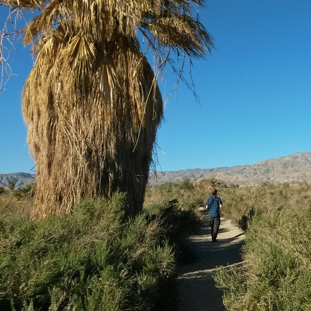 Coachella Valley Preserve, Kalifornia