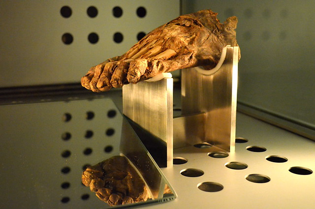 Guanche foot, Museum of man & Nature