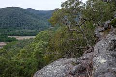 Overlooking Mangrove Creek Valley