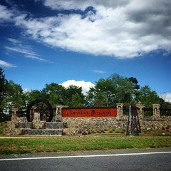 Huge new Del Webb 55+ residential development in the Springfield area of Fort Mill, SC called Carolina Orchards. #FortMill #placemaking