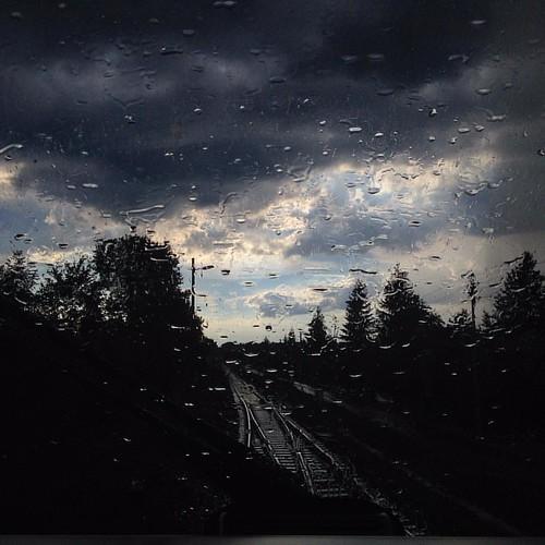 gestern gab es mal wieder Regenwetter