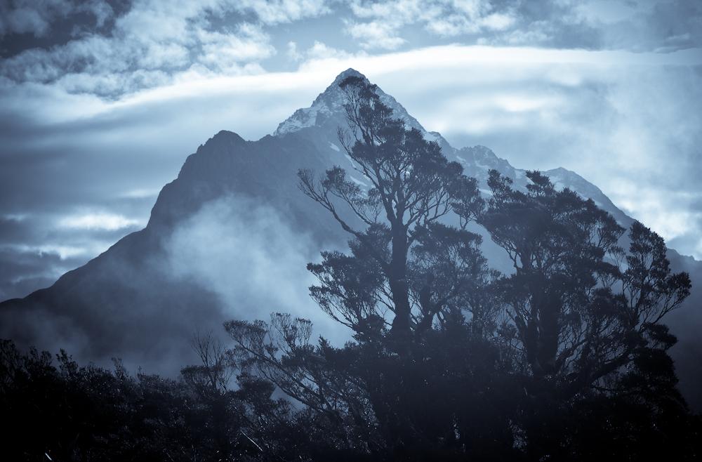 Fiordland-20