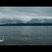 Swan Lake by James Yeung