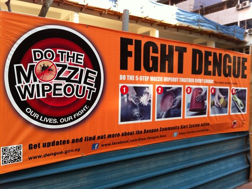 Fight dengue by ellen forsyth