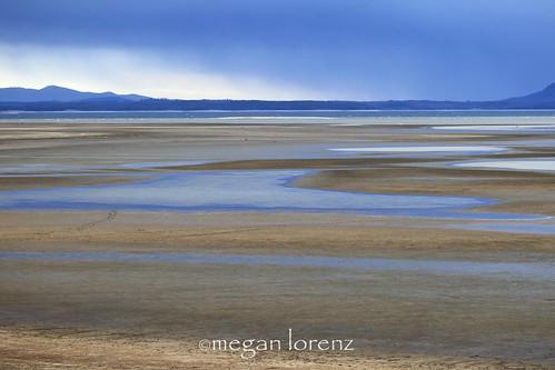 Blue by Megan Lorenz