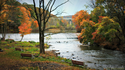 autumn trees fall nature water leaves river landscape waterfall highway rocks colorful stream natural pennsylvania dam ripple scenic ducks pa turnpike benches picturesque waterscape parryville mygearandme mygearandmepremium blinkagain carolynlandi