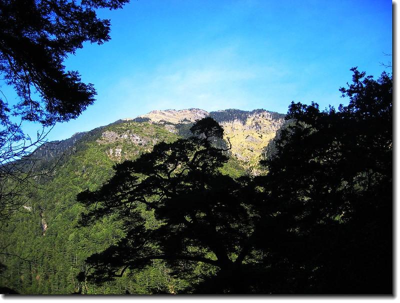 遠眺畢祿山(From820林道)