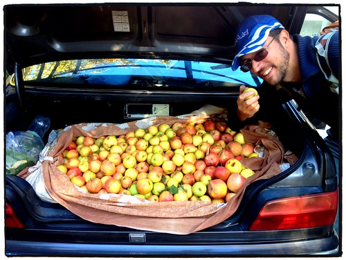 Now that's a lot of Apples by tf_82