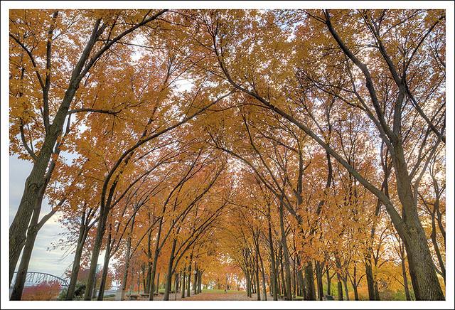 Arch Grounds 2013-11-02 5