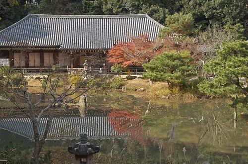 【写真】2013 紅葉 : 浄瑠璃寺/2019-08-22/IMGP3552
