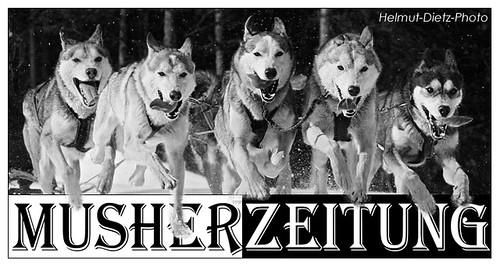 Siberian Huskies, Musherzeitung: Media-Partner der WSA Schlittenhunde WM 2014, Kandersteg, Schweiz