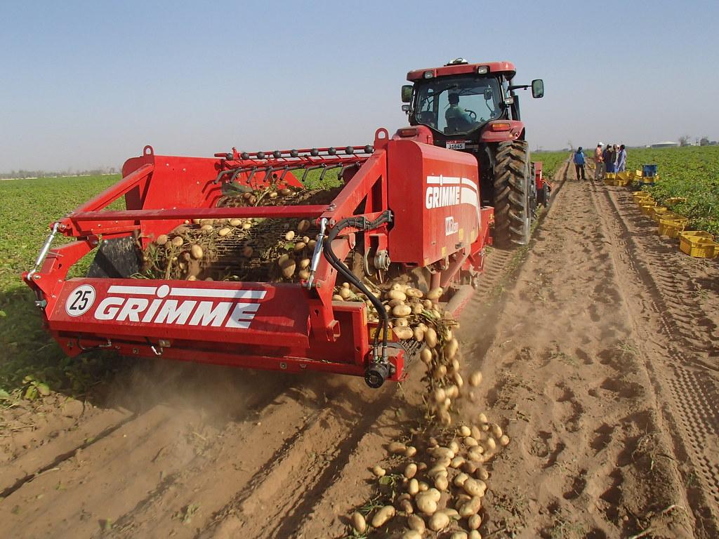 Grimme group 39 s most interesting flickr photos picssr - Date recolte pomme de terre ...
