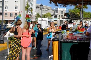 San Juan - Macaws and Tourists