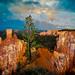 Walking Along the Edge of Utah by Trey Ratcliff