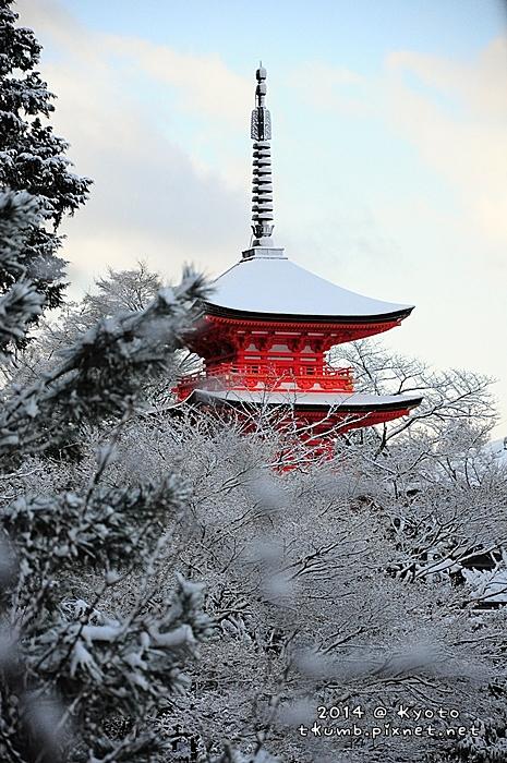 雪清水 (8).jpg
