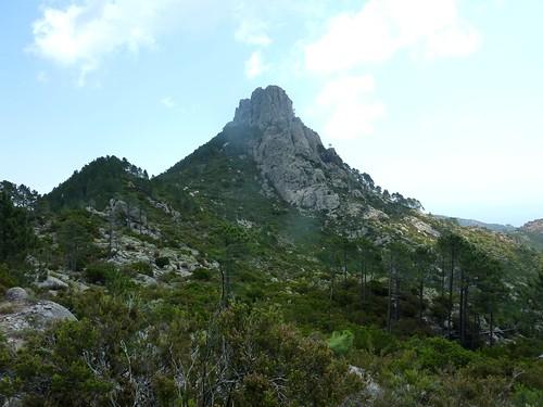 Sur le sentier Capeddu - Sari : en vue de Punta Balardia