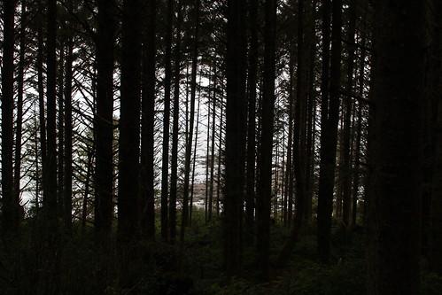 park sunset oregon bay coast state hiking trail shore cape acres arago wsweekly74