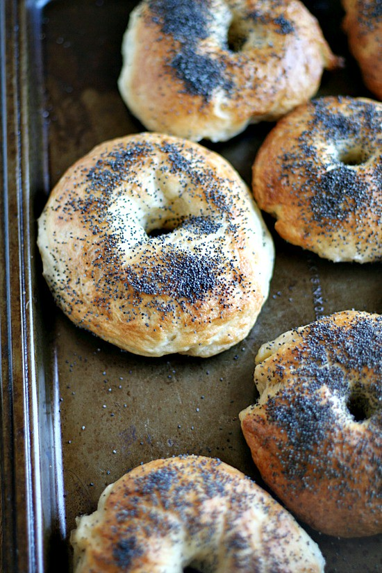 Lemon Poppy Seed bagels