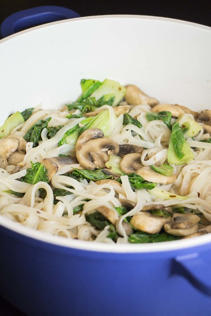Oriental Spicy Bok Choy Noodles_6