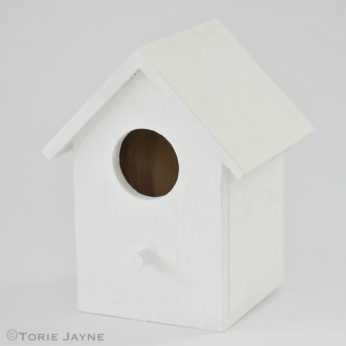 Primed birdhouse