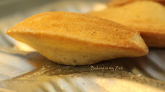 Happy 6th Blogiversary to Baking is my Zen! And a Lemony Madeleines Recipe (1-31-15)