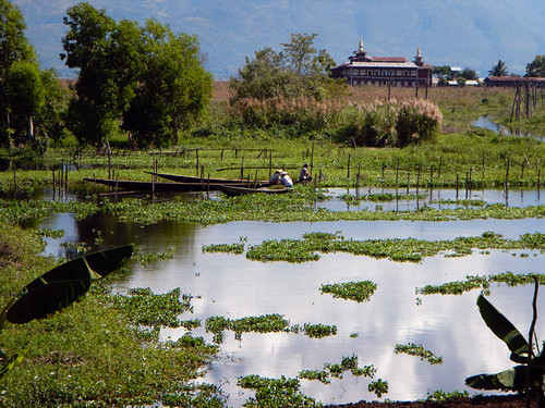 Scenery on our Inle Lake Bike Trip