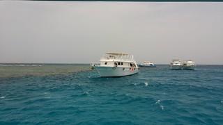 Hurghada 4-5-2016