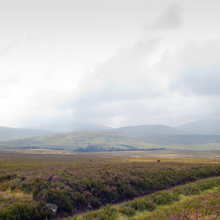 towards White Law, The Cheviot