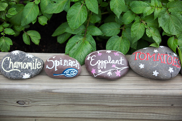 DIY Painted Garden Markers