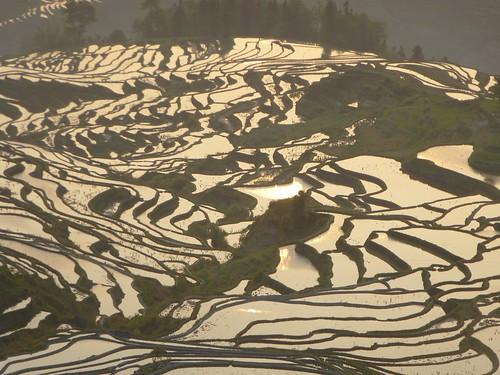 Yunnan13-Yuanyang 1-Duoyishu (75)