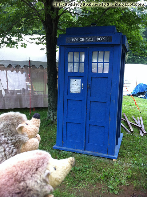 Hedgehogs & TARDIS - Pennsic, Slipper Rock, PA