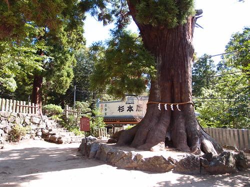 Tsukuba Shrine @ Mount Tsukuba