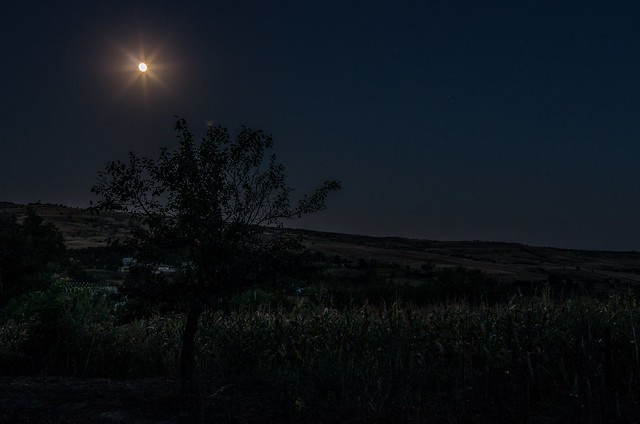 Moldovian Nocturne