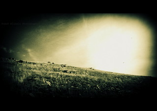 Endless Hills