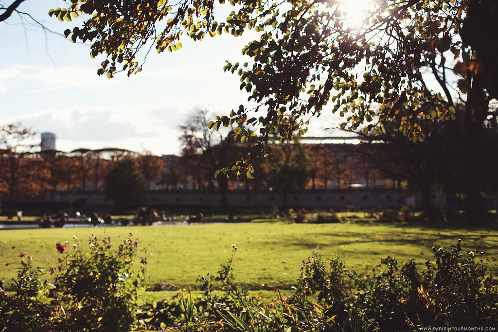 Autumn in Jardin des Tuileries, photo by Carin Olsson of Paris in Four Months